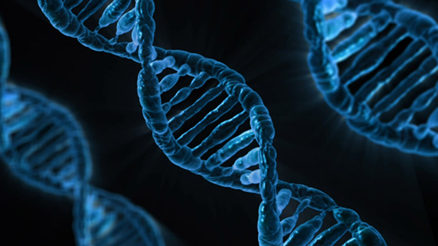 DNA_image_960_720